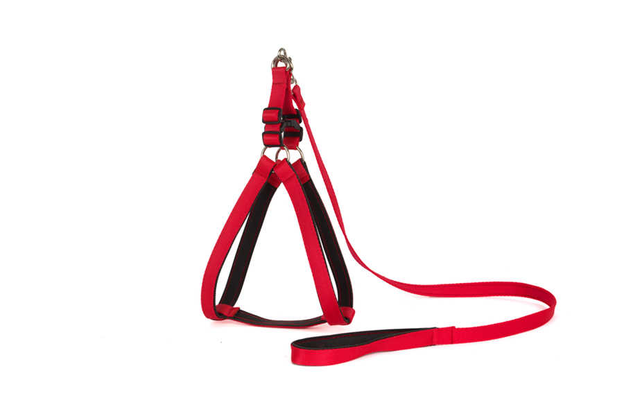 SOFT LEASH AND HARNESS NO : 4 20x140 cm